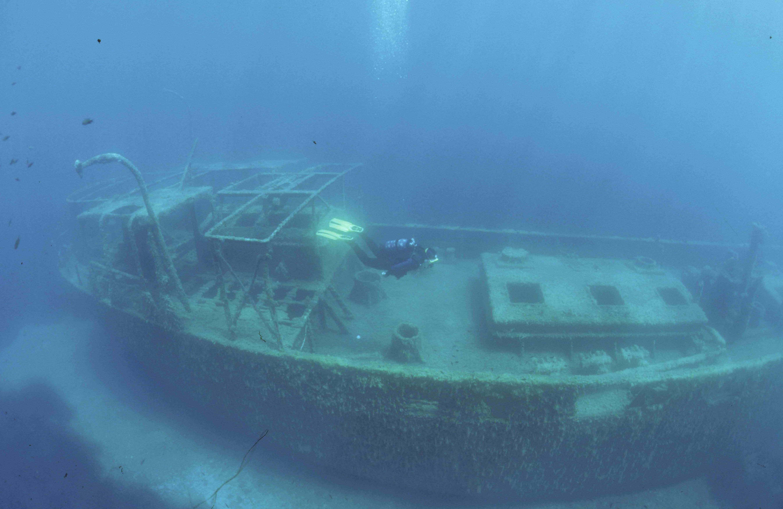 Référencement de : L'Hippocampe plongée sous marine à Calvi en Corse.
